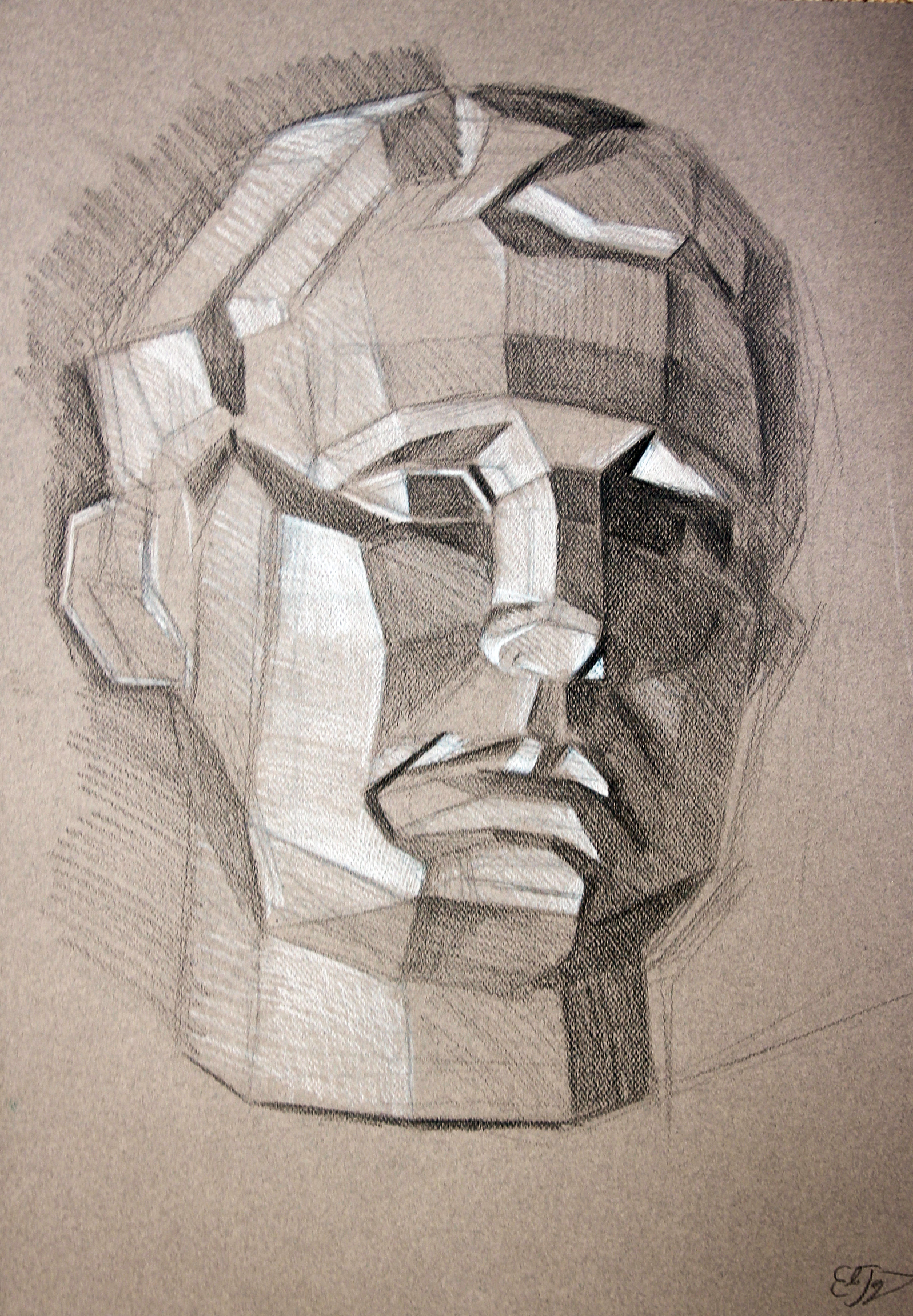 portrait_head_anatomy